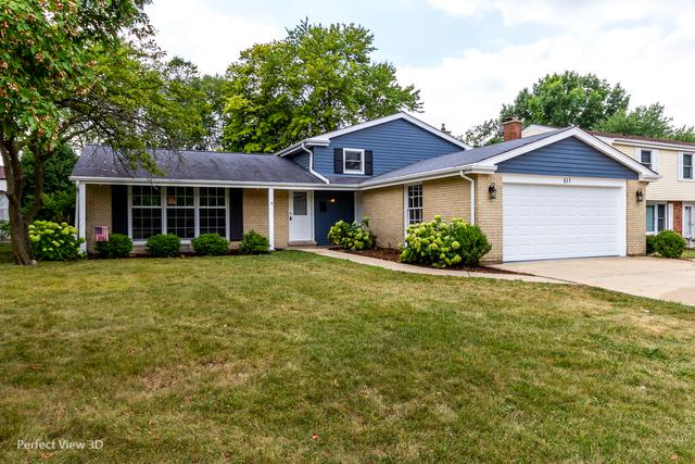 511 E Hackberry Drive, Arlington Heights, IL 60004 (MLS #10047597) :: Lewke Partners