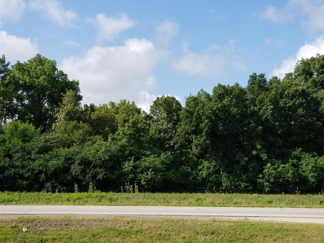26272 N Us Highway 12, Wauconda, IL 60084 (MLS #10047913) :: Domain Realty
