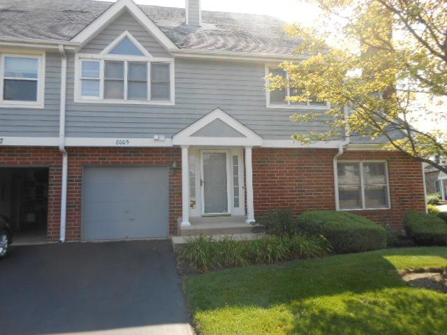 8005 Barrymore Drive, Darien, IL 60561 (MLS #10048396) :: Domain Realty