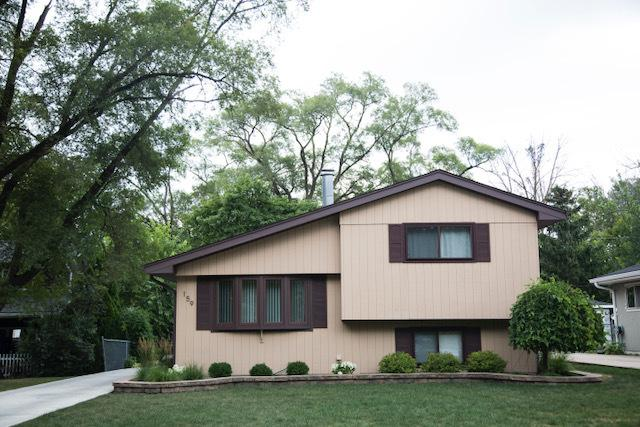 159 N Edgewood Avenue, Wood Dale, IL 60191 (MLS #10048693) :: Domain Realty