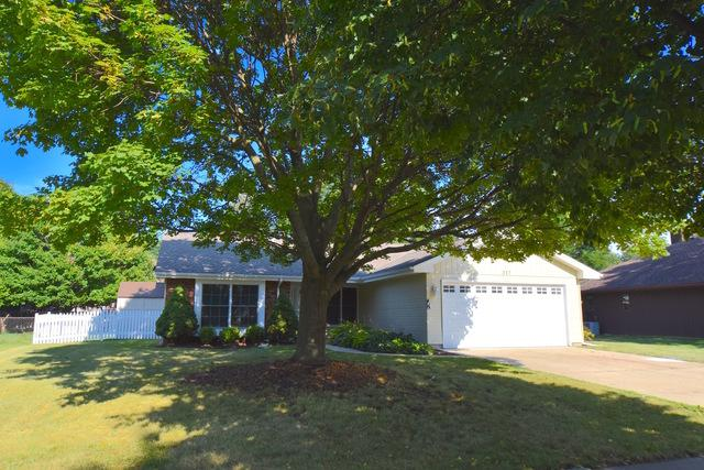 317 Islington Lane, Schaumburg, IL 60193 (MLS #10048700) :: Domain Realty