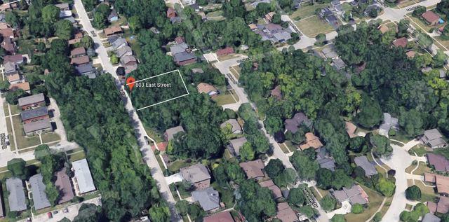 803 East Street, Lemont, IL 60439 (MLS #10048768) :: Littlefield Group
