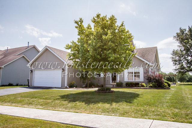 900 Hauert Street, Peotone, IL 60468 (MLS #10048839) :: Littlefield Group