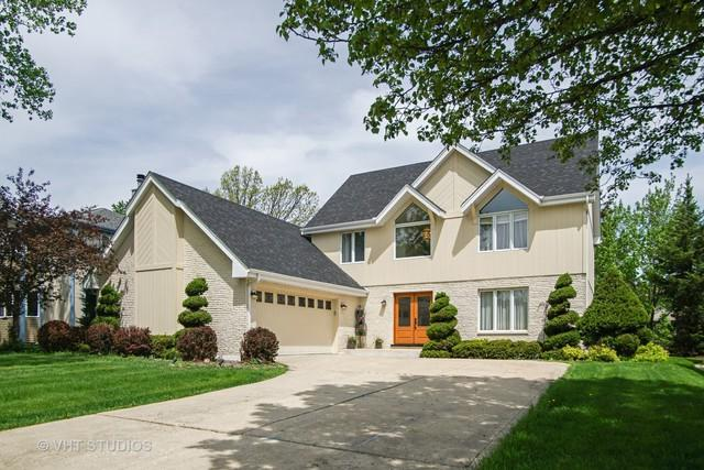 461 E Montrose Avenue, Wood Dale, IL 60191 (MLS #10048918) :: Domain Realty