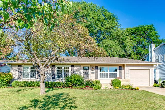 611 Stonehaven Avenue, Elk Grove Village, IL 60007 (MLS #10049123) :: Domain Realty