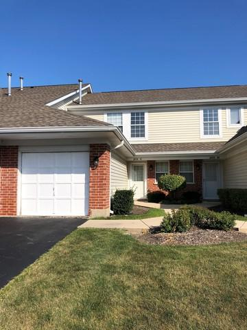201 Winnsboro Court C, Schaumburg, IL 60193 (MLS #10049630) :: Domain Realty