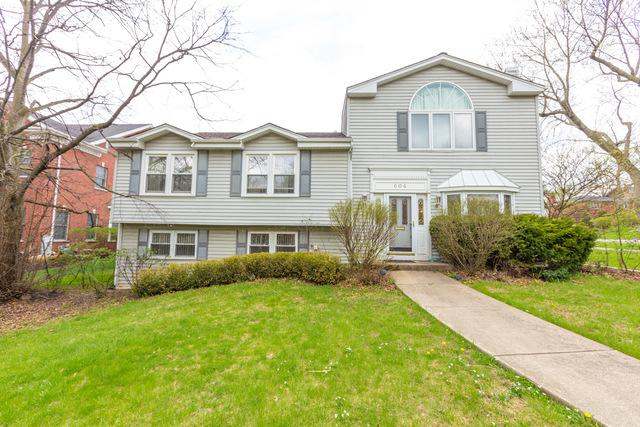604 S Stough Street, Hinsdale, IL 60521 (MLS #10049789) :: Littlefield Group