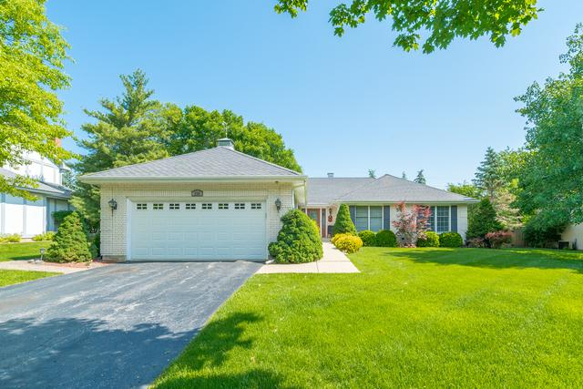 330 Terrace Court, Palatine, IL 60067 (MLS #10050019) :: Domain Realty