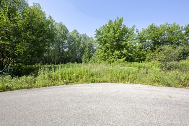 Lot 2 Balsam Court, Long Grove, IL 60047 (MLS #10050047) :: The Schwabe Group