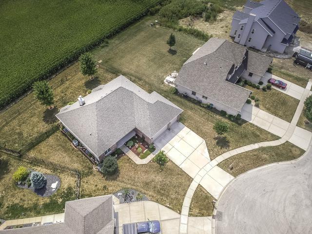27219 Deer Hollow Lane, Channahon, IL 60410 (MLS #10050157) :: Littlefield Group