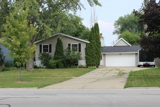 425 S Braintree Drive, Schaumburg, IL 60193 (MLS #10050788) :: Domain Realty