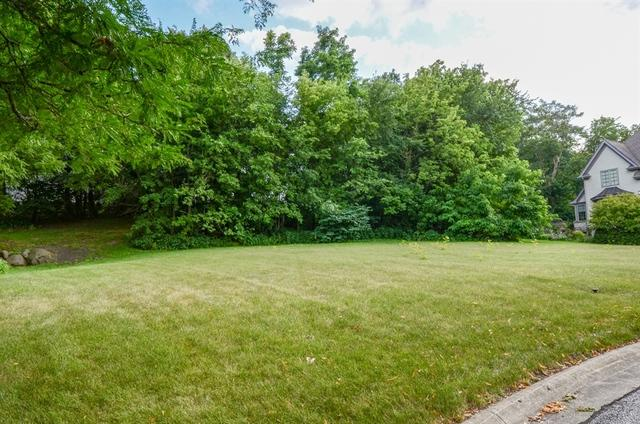 27W727 Brookside Drive, Winfield, IL 60190 (MLS #10050954) :: Littlefield Group