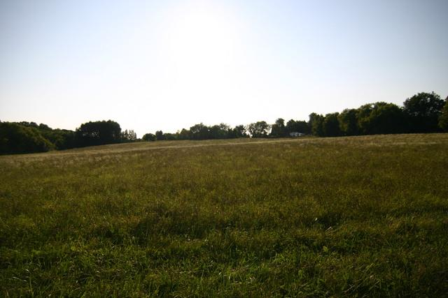 0000 Prairie Lane, Belvidere, IL 61008 (MLS #10050970) :: Domain Realty