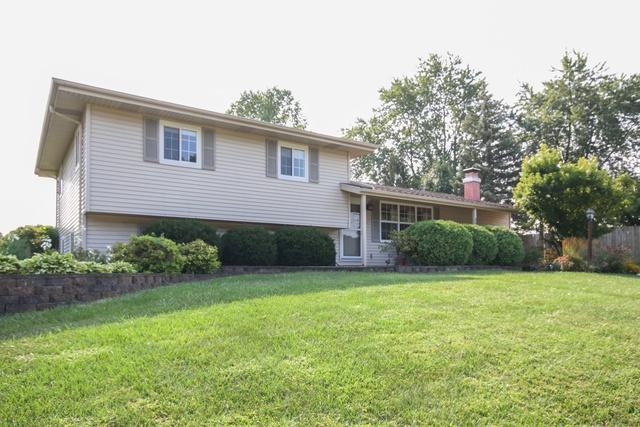 2906 Rydal Street, New Lenox, IL 60451 (MLS #10051173) :: The Wexler Group at Keller Williams Preferred Realty