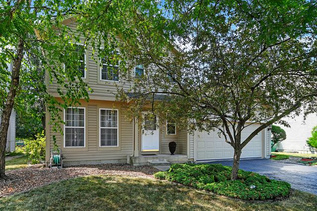 20927 W Ardmore Circle, Plainfield, IL 60544 (MLS #10051201) :: Littlefield Group