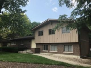 302 N Airlite Street #302, Elgin, IL 60123 (MLS #10051254) :: Littlefield Group