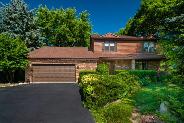 24651 W Magnolia Drive, Antioch, IL 60002 (MLS #10051271) :: The Jacobs Group