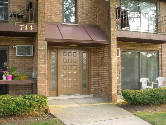 744 N Briar Hill Lane #2, Addison, IL 60101 (MLS #10051463) :: Domain Realty