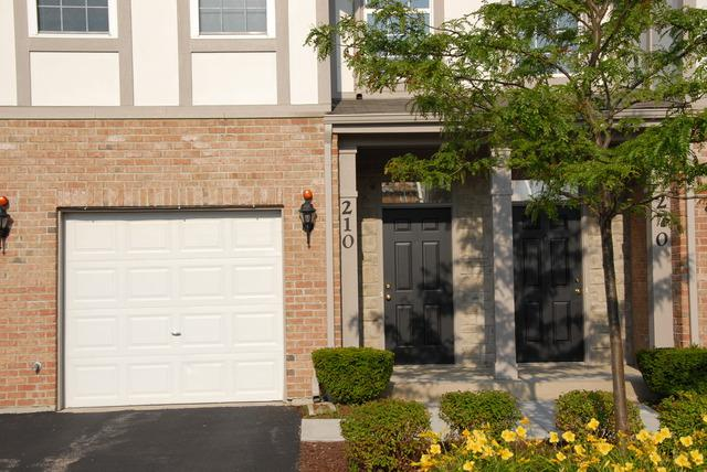 260 Rosehall Drive #210, Lake Zurich, IL 60047 (MLS #10051635) :: The Jacobs Group