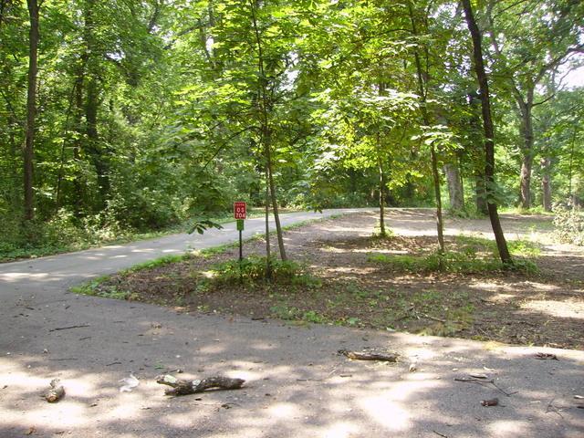 Os810 Autumn Woods Lane, Elburn, IL 60119 (MLS #10051732) :: Lewke Partners