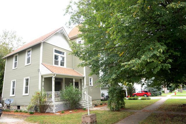 217 E Wilson Street, Peotone, IL 60468 (MLS #10051894) :: Littlefield Group