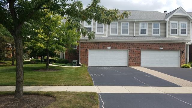 115 Chestnut Street #115, Burr Ridge, IL 60521 (MLS #10052028) :: The Wexler Group at Keller Williams Preferred Realty
