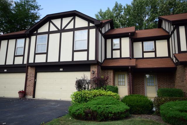 28 Willowbridge Way #28, Bloomingdale, IL 60108 (MLS #10052029) :: Domain Realty