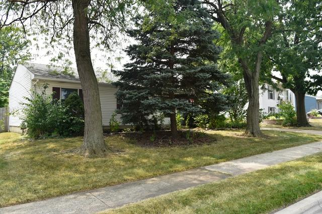 313 Haller Avenue, Romeoville, IL 60446 (MLS #10052271) :: The Jacobs Group