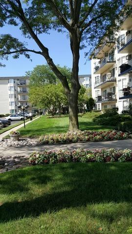 5510 W Lincoln Avenue B502, Morton Grove, IL 60053 (MLS #10052299) :: The Spaniak Team