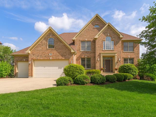 694 Buena Vista Drive, Glen Ellyn, IL 60137 (MLS #10052578) :: The Wexler Group at Keller Williams Preferred Realty