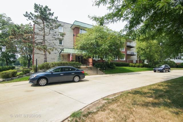 100 N Regency Drive E #203, Arlington Heights, IL 60004 (MLS #10052682) :: Littlefield Group