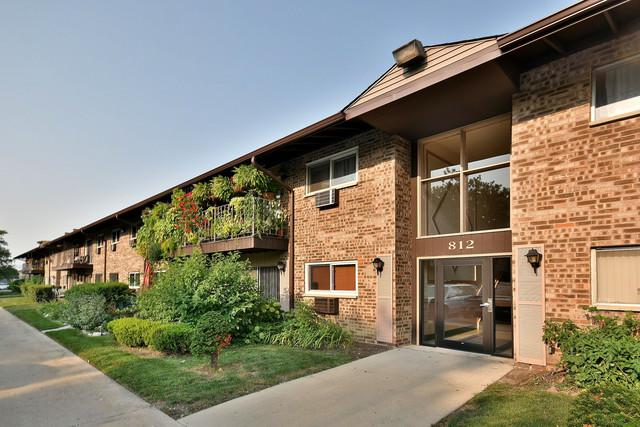 812 E Old Willow Road #108, Prospect Heights, IL 60070 (MLS #10052894) :: The Spaniak Team