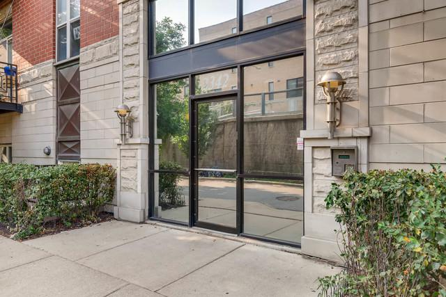 2342 W Bloomingdale Avenue #101, Chicago, IL 60647 (MLS #10052926) :: Domain Realty