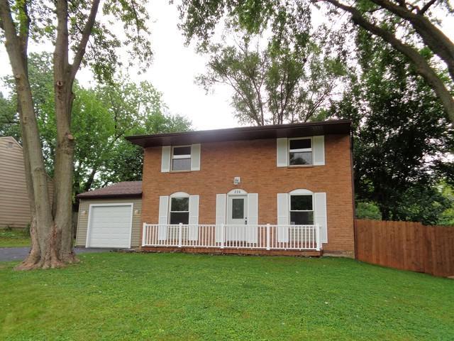 226 Seabury Road, Bolingbrook, IL 60440 (MLS #10053025) :: Littlefield Group