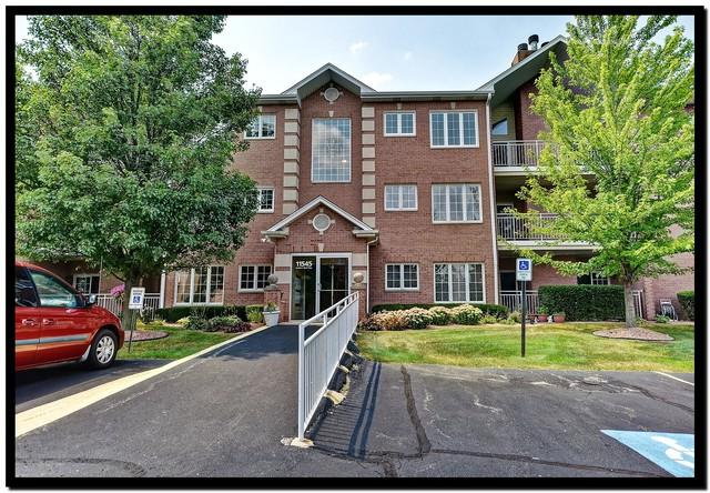 11545 Settlers Pond Way 1A, Orland Park, IL 60467 (MLS #10053169) :: The Wexler Group at Keller Williams Preferred Realty