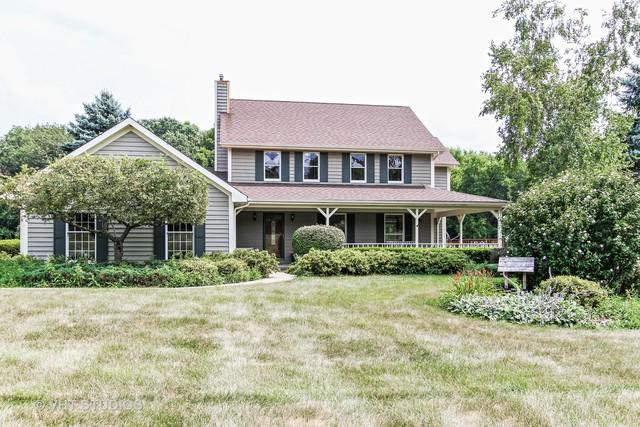 6218 Johnsburg Road, Spring Grove, IL 60081 (MLS #10053386) :: Littlefield Group
