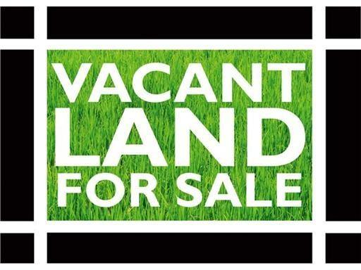 6422 S Ashland Avenue, Chicago, IL 60636 (MLS #10053420) :: Domain Realty