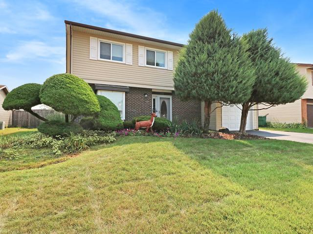 711 Gavin Avenue, Romeoville, IL 60446 (MLS #10053449) :: Domain Realty