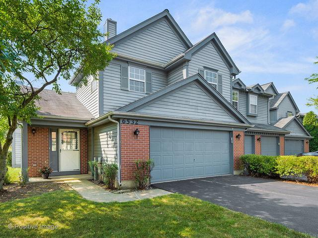 6532 Stair Street, Downers Grove, IL 60516 (MLS #10053506) :: Domain Realty