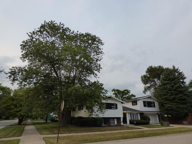 14845 Clark Street, Dolton, IL 60419 (MLS #10053534) :: The Jacobs Group