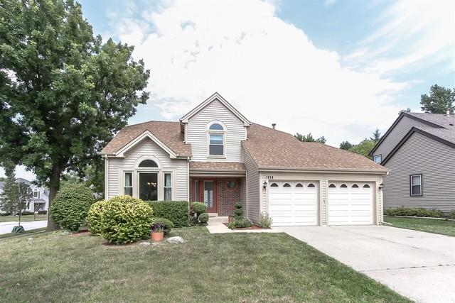 1908 Albany Court, Elk Grove Village, IL 60007 (MLS #10053621) :: The Jacobs Group