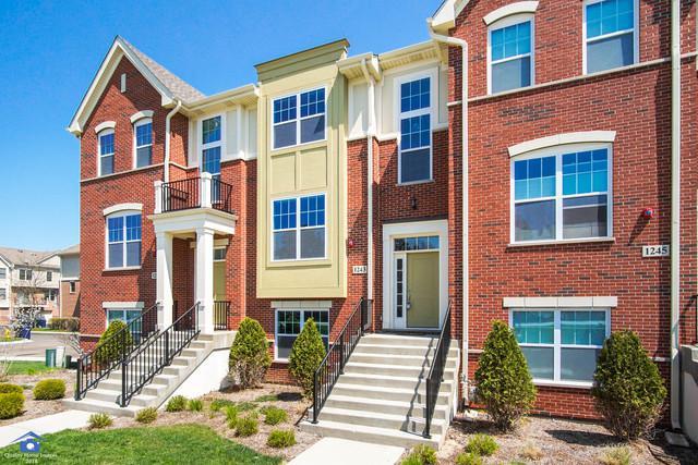 1243 Danforth Court, Vernon Hills, IL 60061 (MLS #10053624) :: The Schwabe Group