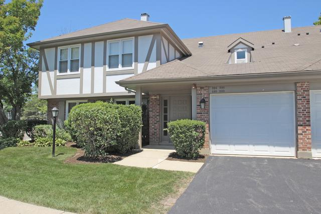 222 Coventry Circle #146, Vernon Hills, IL 60061 (MLS #10053709) :: The Schwabe Group