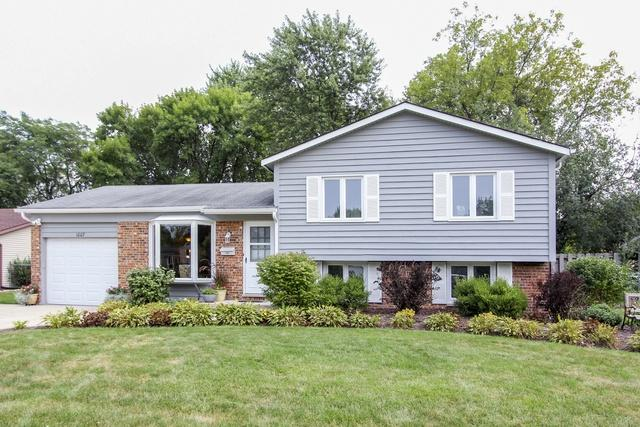 1007 N Apple Tree Court, Palatine, IL 60067 (MLS #10053800) :: The Jacobs Group