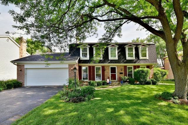 206 White Fawn Trail, Downers Grove, IL 60516 (MLS #10053989) :: The Wexler Group at Keller Williams Preferred Realty