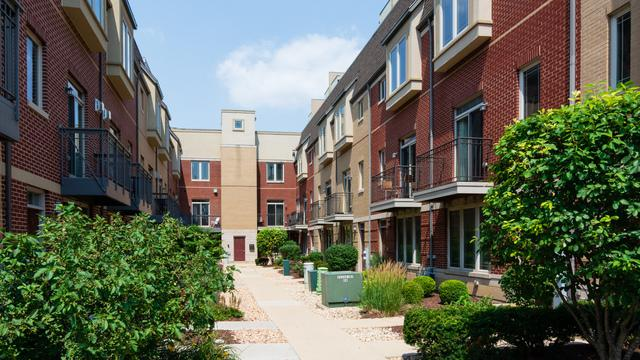 922 Warren Avenue #207, Downers Grove, IL 60515 (MLS #10054146) :: Domain Realty