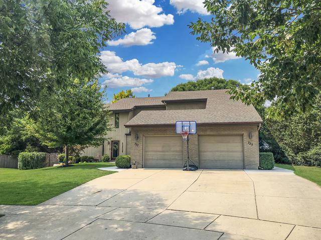 725 S Raven Road, Shorewood, IL 60404 (MLS #10054166) :: The Spaniak Team