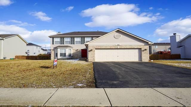216 N Orchard Drive, Bolingbrook, IL 60440 (MLS #10054727) :: The Wexler Group at Keller Williams Preferred Realty