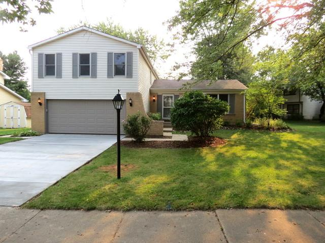 6S049 Greenwood Court, Naperville, IL 60540 (MLS #10054831) :: The Wexler Group at Keller Williams Preferred Realty
