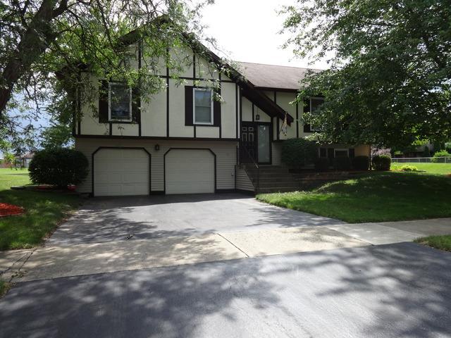 804 Cottonwood Drive, North Aurora, IL 60542 (MLS #10055057) :: Littlefield Group